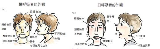 用口和鼻子呼吸差異造成的影響